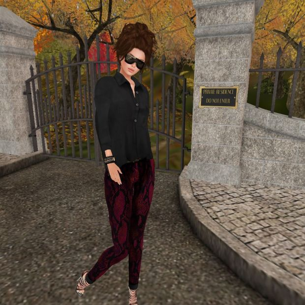 11:23:13- Sec Wed (49L)- LG, Autumn in Rome HUD 1 Outfit (Red Pants:Black Shirt)