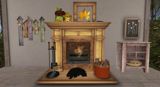 TMS Fireplace & Serenity Style